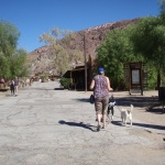 Volkswalking at Calico Ghost Town