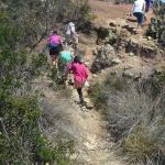 Volkswalking on Catalina Island