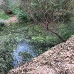 Lower Arroyo Seco Trail S. Pasadena Pond