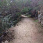 Lower Arroyo Seco Trail S. Pasadena Trail